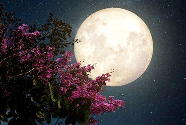 رخداد اولین پدیده ابر ماه صورتی در سال 2020