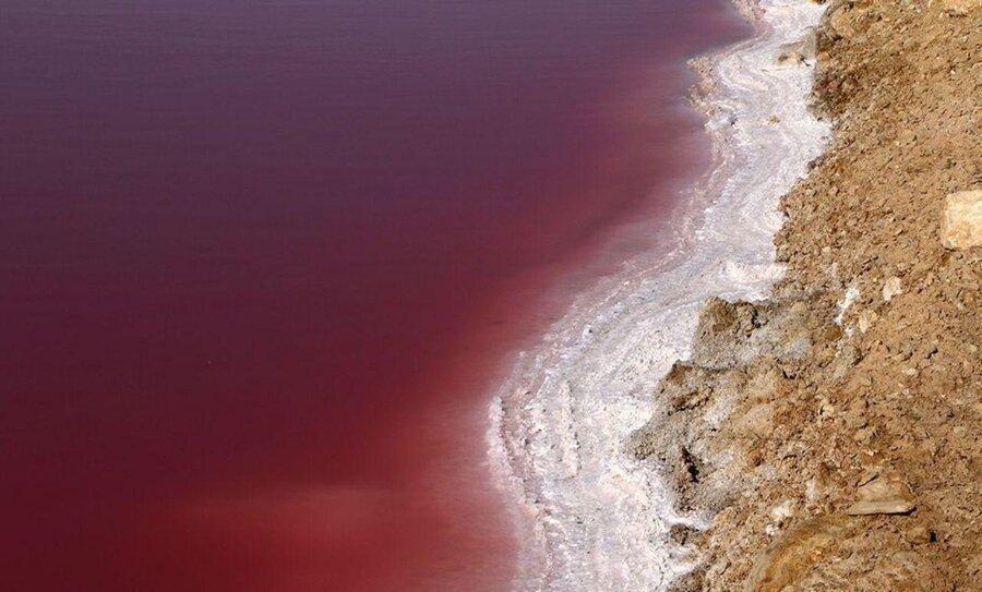 پدیده ای نادر ، دریاچه نمک قم برای اولین بار سرخ شد