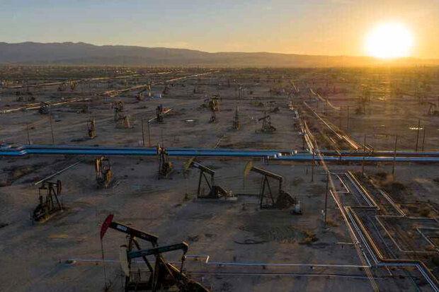 سقوط یک درصدی قیمت نفت خام