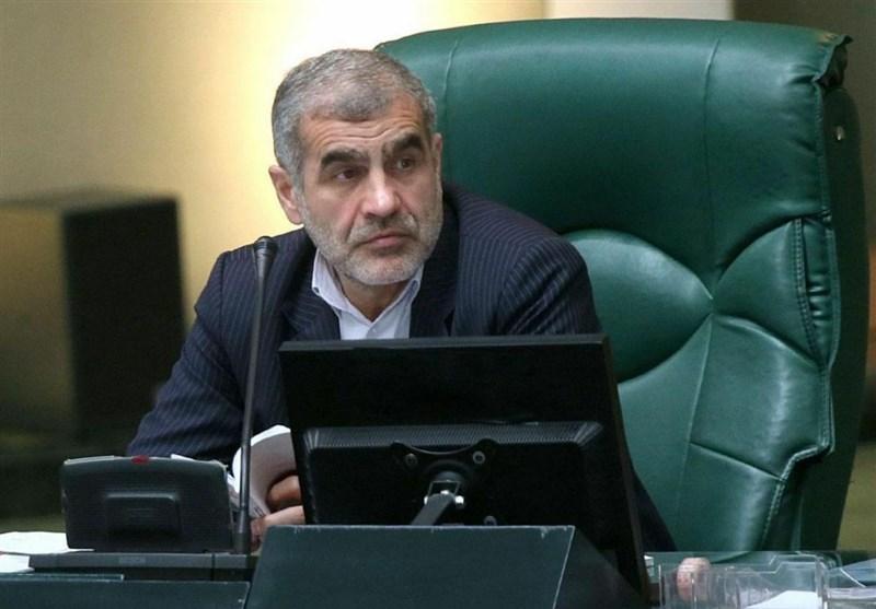 نیکزاد: وزارت جهاد کشاورزی باید بازار جهانی زعفران را بدست بگیرد ، موضوع زعفران در مجلس پیگیری جدی می شود