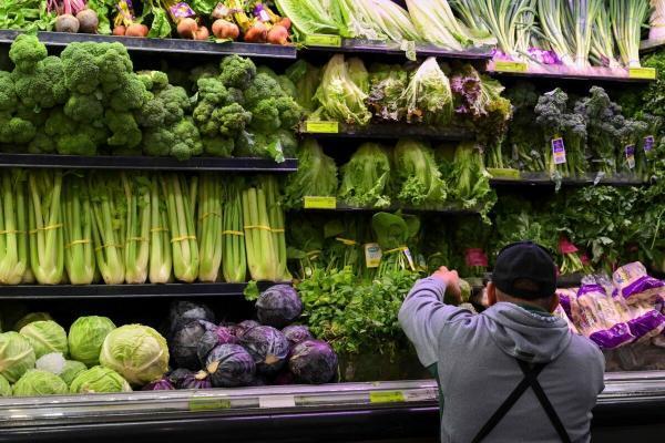 چند نکته اثبات شده درباره گیاه خواری؛ از سلامت قلب تا دوری از سرطان
